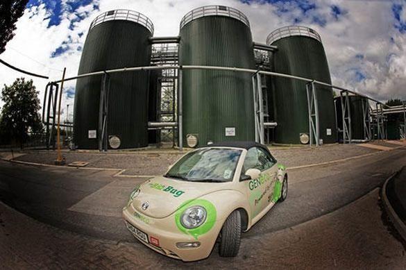 Volkswagen Beetle Geneco