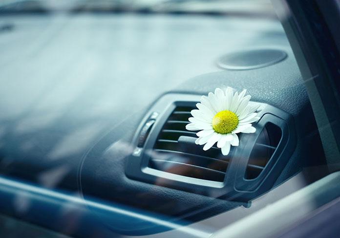 Filtr kabinowy w samochodzie